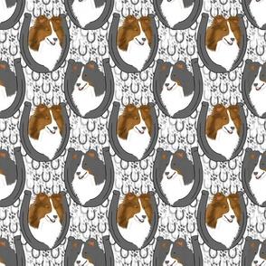 Shetland sheepdog horseshoe portraits