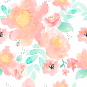 Indy Bloom Design Blush Baby