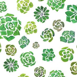 Mojave Succulent Fabric