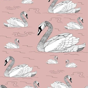 Swans Pink