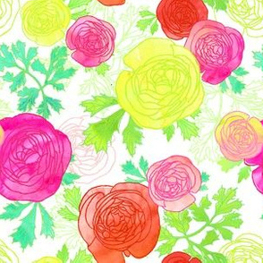 Ranunculus Watercolor Floral