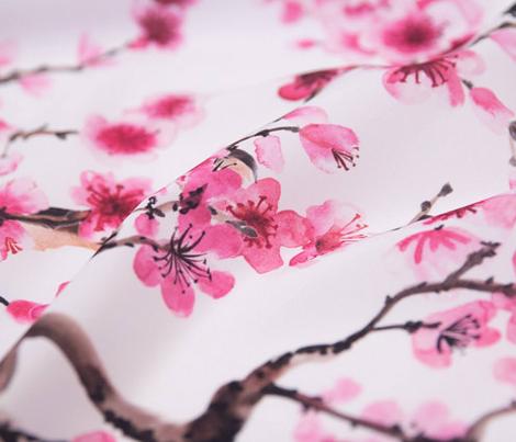 Sakura Branches