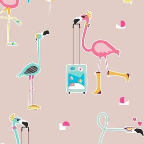 Flamingo have fun