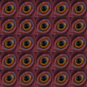 Chicken Eye I