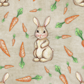 Bunny and Carrot Love
