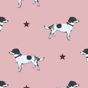 Jack Russell POPPY PINK