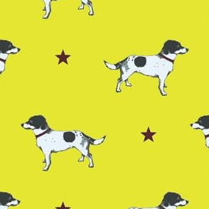 Jack Russell POPPY LIME