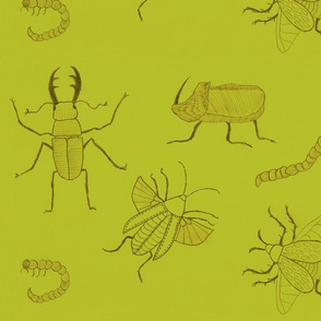 Light green Insects by Sara Aurora Waters