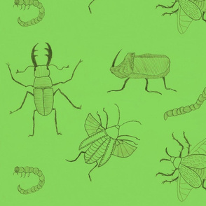 Medium green Insects by Sara Aurora Waters