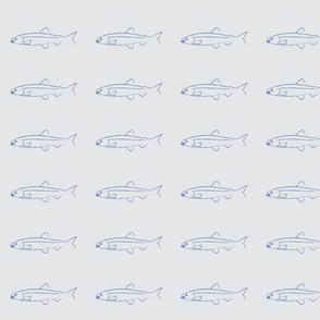 Fish shoals  grey small design