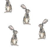 Rabbits on White