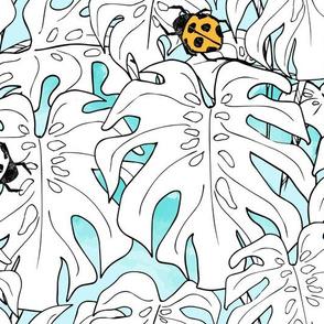 Lady bugs & Monstera Leaf