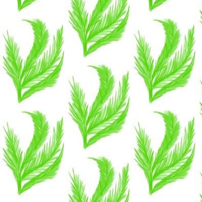 Feathery Leaf Fronds on White - Medium Scale