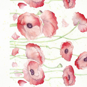 Watercolor Poppy Single Border
