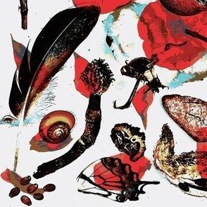 Curiosities and Petals