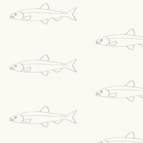 Fish shoals cream