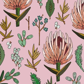 protea_pink