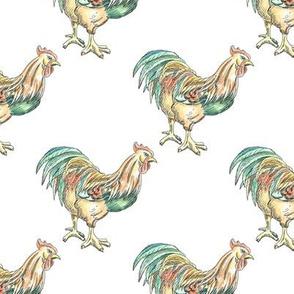 Hand Drawn Rooster Pattern