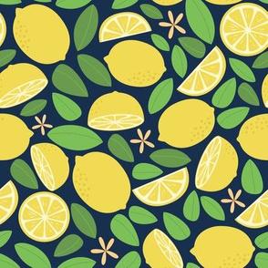 Lemon Tree Night