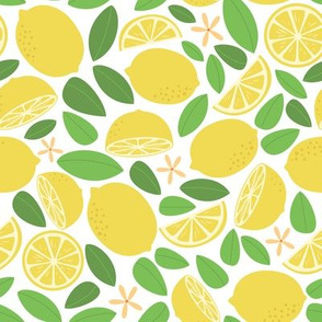 Lemon Tree Day