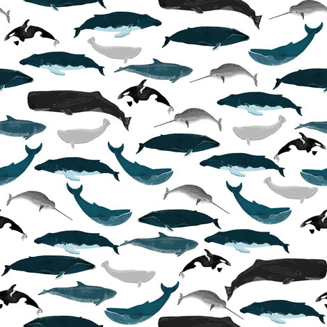 Whales whale ocean nautical orca narwhal blue whale for Whale fabric