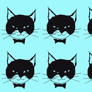 Black Cat on Aqua