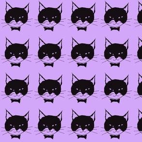 Black Cat on Purple