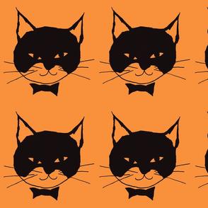 Black Cat on Orange