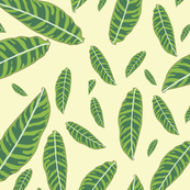 Green Boat Leaves on Cream