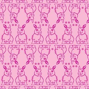 Baby Bunny Two Tone Pink