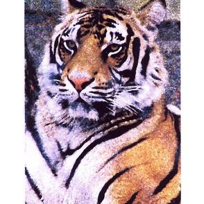 TIGER PORTRAIT