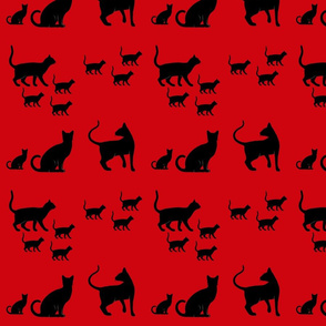 cats on red 1