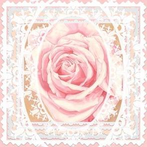 Bridal Rose Beautiful Lace Pink Wedding