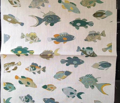 Fish - Coastal