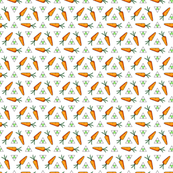 Bunny's Carrots and Triangles