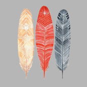 Feathers small