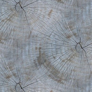 Tree Rings- natural