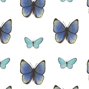 Blue Watercolor Butterflies