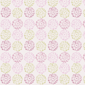 Mauve Pink Daisy