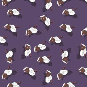 Purple Spindles