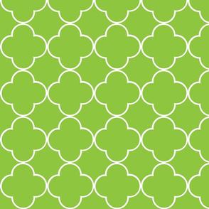 quatrefoil 2 Medium - lime