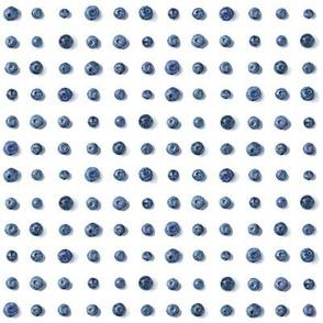 wild blueberries polkadot