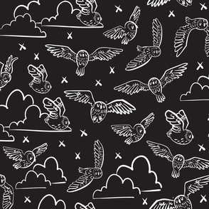 owls black