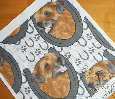 Border terrier horseshoe portraits