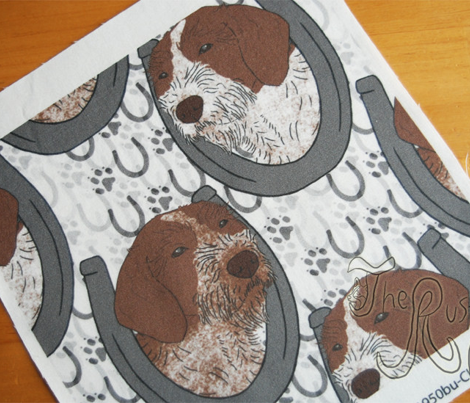 German wirehaired Pointer horseshoe portraits