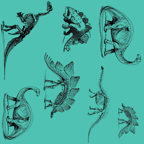 Dinosaur Skeletons   Teal and Black