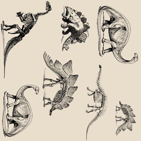 Dinosaur Skeletons on Cream