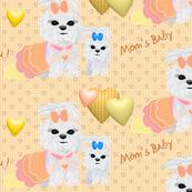 Maltese - Mom's Baby
