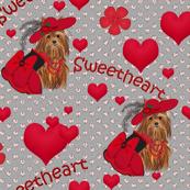 Yorkie - Tori's Red Sweetheart