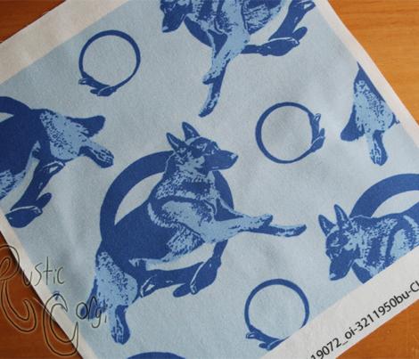 Collared leaping German Shepherd dog portraits - blue